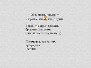 ОРЗ, ринит, гайморит (верхние дыхательные пути) Бронхит, острый трахеит, брон