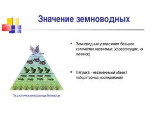 Значение земноводных Земноводные уничтожают большое количество насекомых (кро