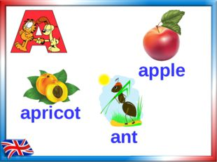 apple apricot ant