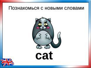Познакомься с новыми словами cat
