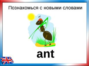 ant Познакомься с новыми словами