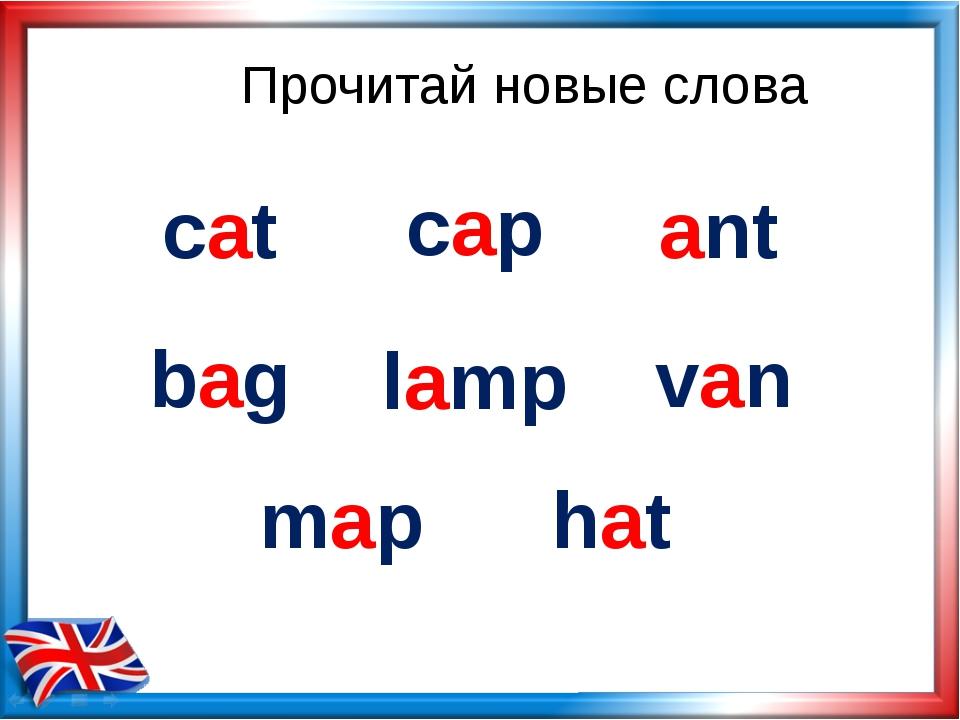 Прочитай новые слова cat cap ant bag lamp van hat map