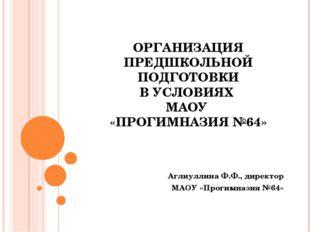 ОРГАНИЗАЦИЯ ПРЕДШКОЛЬНОЙ ПОДГОТОВКИ В УСЛОВИЯХ МАОУ «ПРОГИМНАЗИЯ №64» Аглиулл