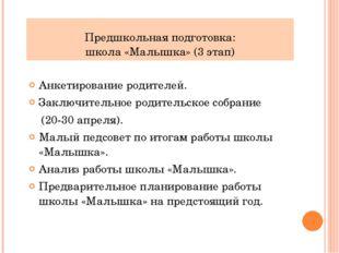 Предшкольная подготовка: школа «Малышка» (3 этап) Анкетирование родителей. За