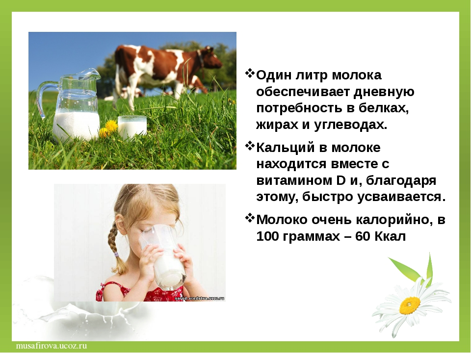Один литр молока обеспечивает дневную потребность в белках, жирах и углеводах...