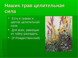 Наших трав целительная сила Есть в травах и цветах целительная сила Для всех,