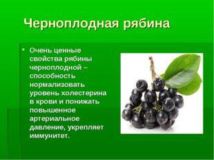 Черноплодная рябина Очень ценные свойства рябины черноплодной – способность