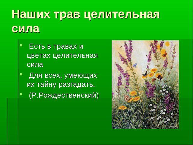 Наших трав целительная сила Есть в травах и цветах целительная сила Для всех,...