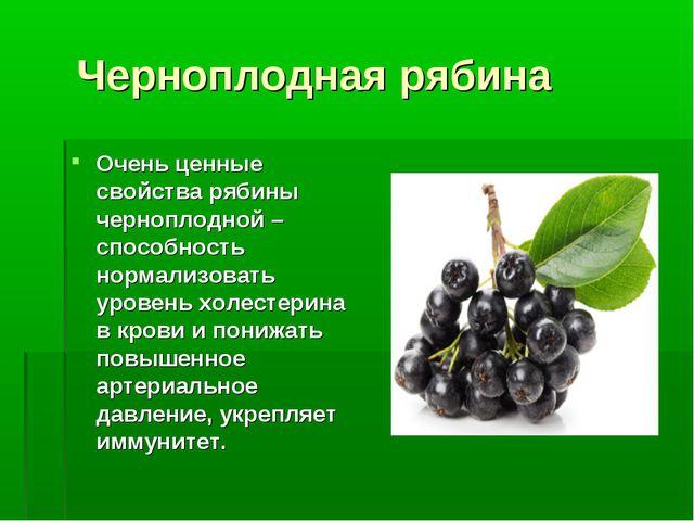 Черноплодная рябина Очень ценные свойства рябины черноплодной – способность...