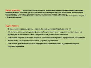 Цель проекта: Создание необходимых условий, направленных на создание здоровье