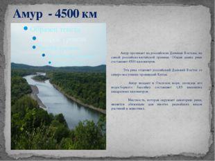 Амур - 4500 км Амур протекает на российском Дальнем Востоке, на самой российс