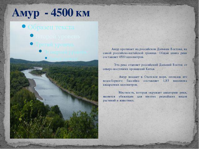Амур - 4500 км Амур протекает на российском Дальнем Востоке, на самой российс...
