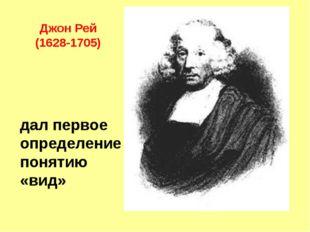 дал первое определение понятию «вид» Джон Рей (1628-1705)