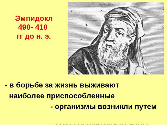 Эмпидокл 490- 410 гг до н. э. - в борьбе за жизнь выживают наиболее приспособ...