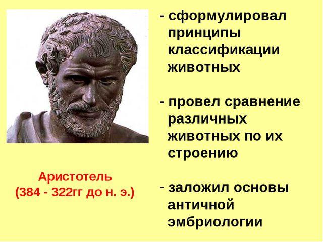 Аристотель (384 - 322гг до н. э.) - сформулировал принципы классификации живо...