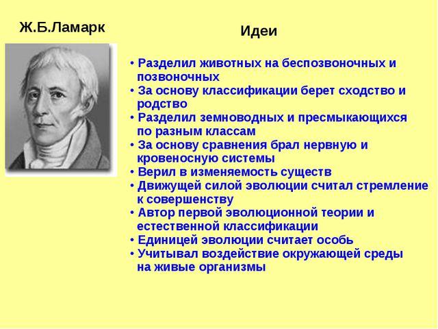 Ж.Б.Ламарк Идеи Разделил животных на беспозвоночных и позвоночных За основ...