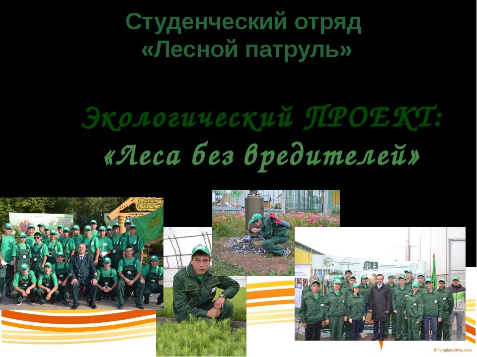 Студенческий отряд «Лесной патруль» Экологический ПРОЕКТ: «Леса без вредителей»