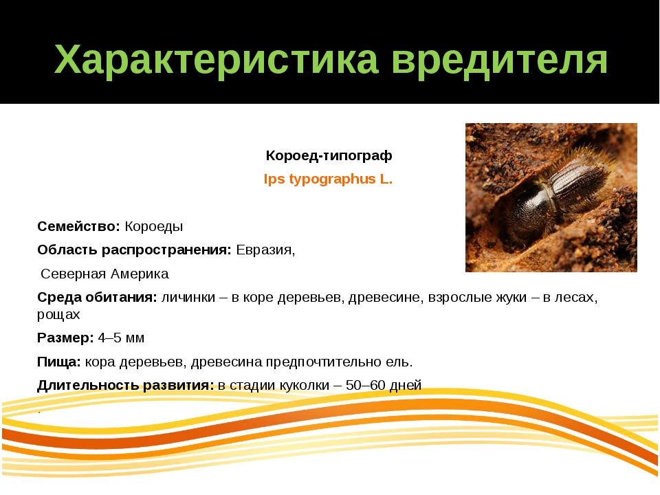 Характеристика вредителя Короед-типограф Ips typographus L. Семейство:Короед...