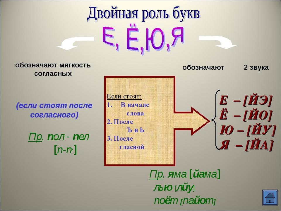 обозначают мягкость согласных обозначают 2 звука (если стоят после согласного...