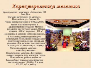 Характеристика магазина Урок проходил в магазине «Бегемотик» ИП Гонт В.А. Маг