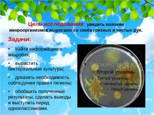 Цель исследования: увидеть колонии микроорганизмов выросших со скоба грязных