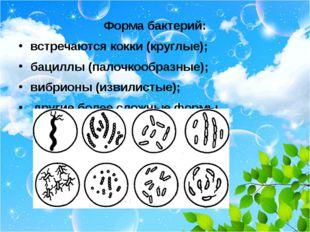Форма бактерий: встречаются кокки (круглые); бациллы (палочкообразные); вибр