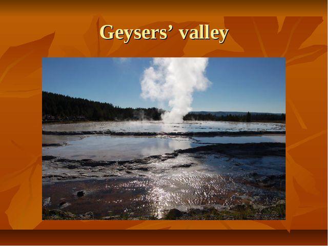 Geysers' valley