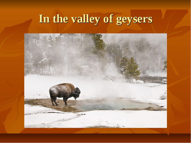 In the valley of geysers
