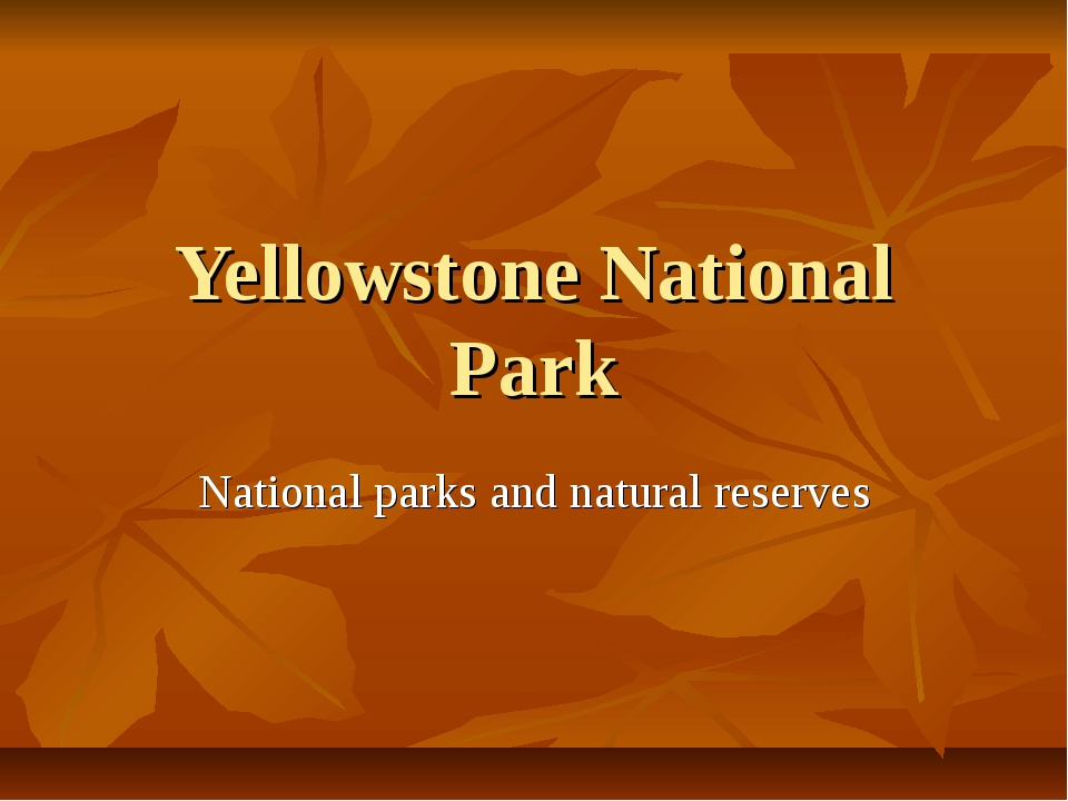 Yellowstone National Park National parks and natural reserves