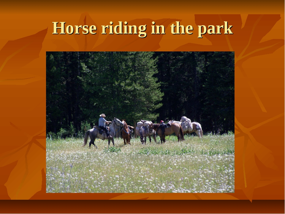 Horse riding in the park