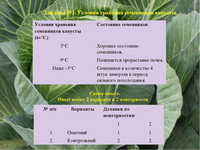 Схема опыта. Опыт имеет 2 варианта и 2 повторности. Таблица №1. Условия хран...