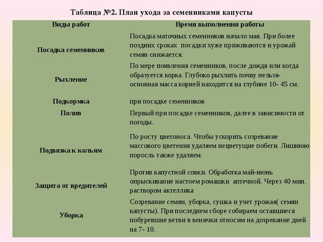 Таблица №2. План ухода за семенниками капусты Виды работ Время выполнения раб...
