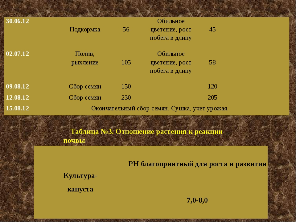 Таблица №3. Отношение растения к реакции почвы 30.06.12 Подкормка 56 Обильное...