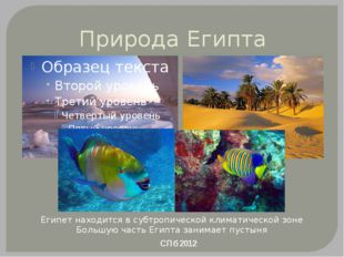 Природа Египта СПб 2012 Египет находится в субтропической климатической зоне