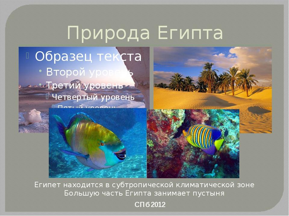 Природа Египта СПб 2012 Египет находится в субтропической климатической зоне...