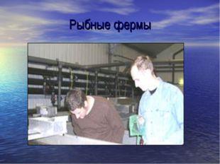 Рыбные фермы