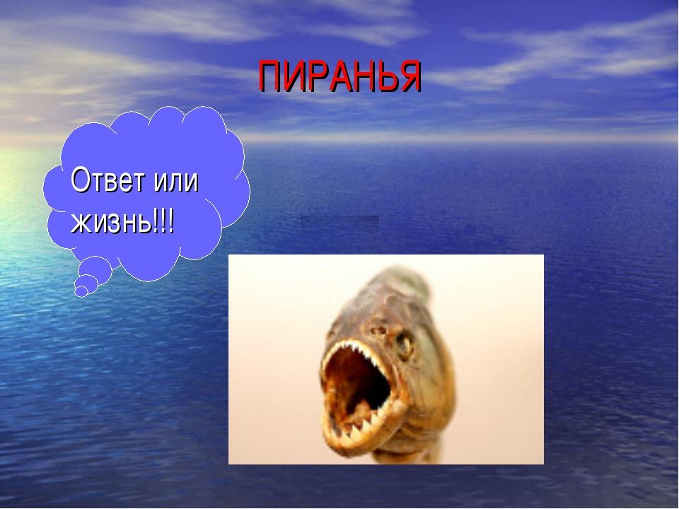 ПИРАНЬЯ Ответ или жизнь!!!