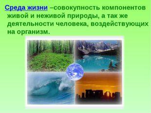 Среда жизни –совокупность компонентов живой и неживой природы, а так же деят