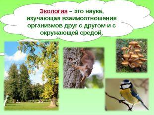 Экология – это наука, изучающая взаимоотношения организмов друг с другом и с