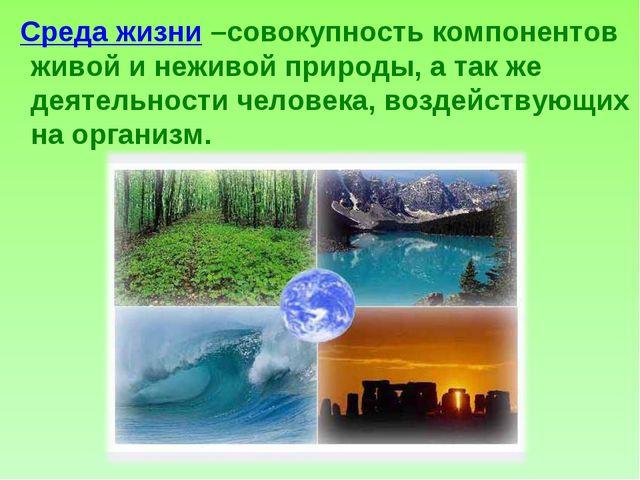 Среда жизни –совокупность компонентов живой и неживой природы, а так же деят...