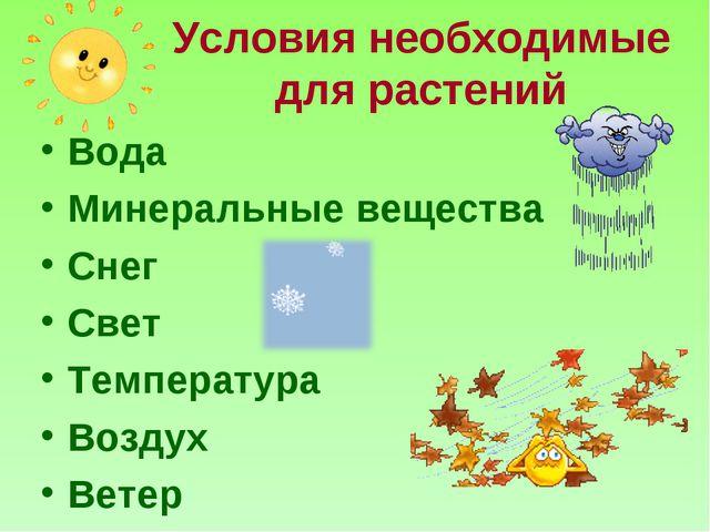 Условия необходимые для растений Вода Минеральные вещества Снег Свет Температ...