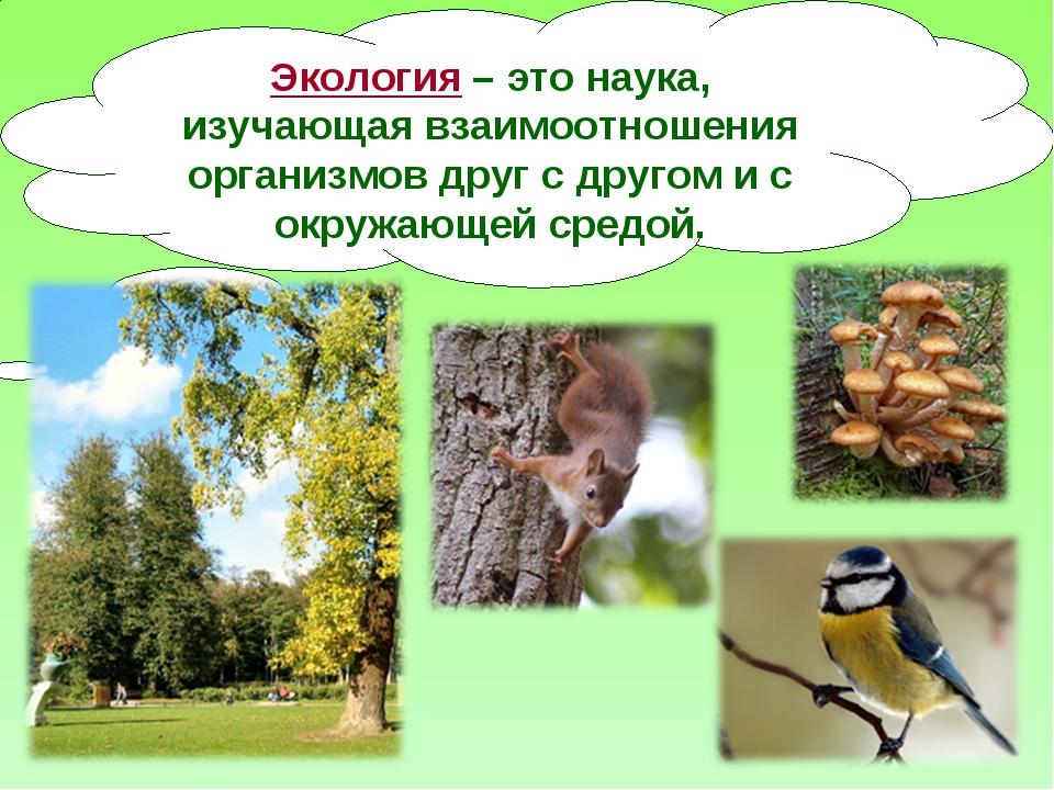 Экология – это наука, изучающая взаимоотношения организмов друг с другом и с...