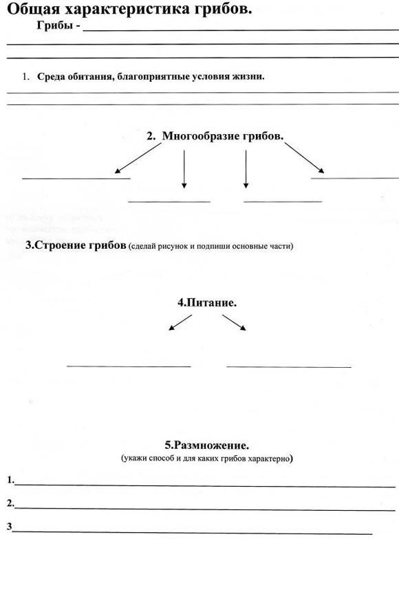 http://festival.1september.ru/articles/516595/Image4765.gif