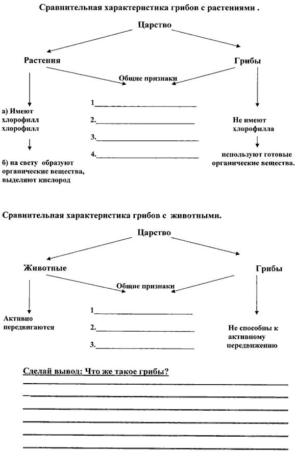 http://festival.1september.ru/articles/516595/Image4766.gif