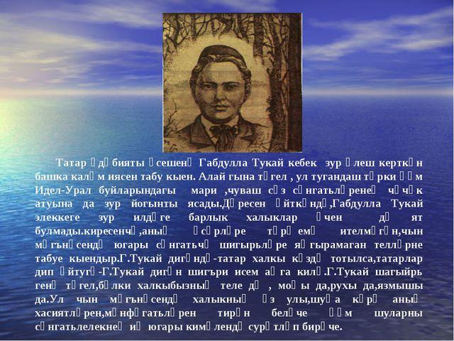 Татар әдәбияты үсешенә Габдулла Тукай кебек зур өлеш керткән башка каләм ияс...
