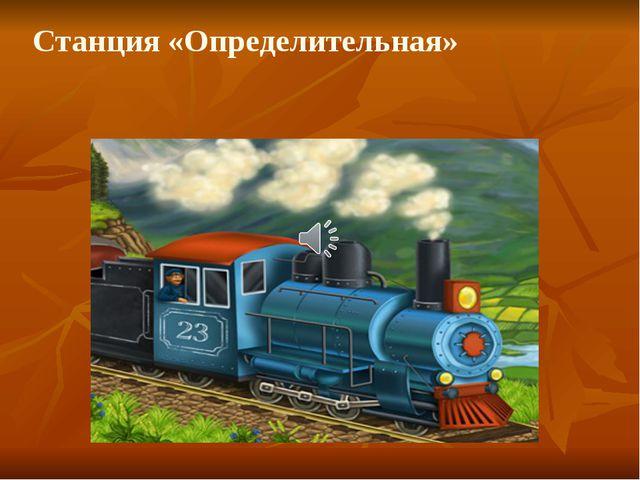 Станция «Определительная»