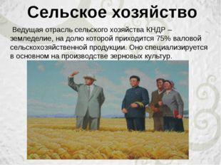 Ведущая отрасль сельского хозяйства КНДР – земледелие, на долю которой прихо