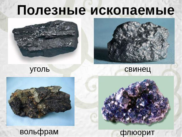 Полезные ископаемые уголь свинец вольфрам флюорит