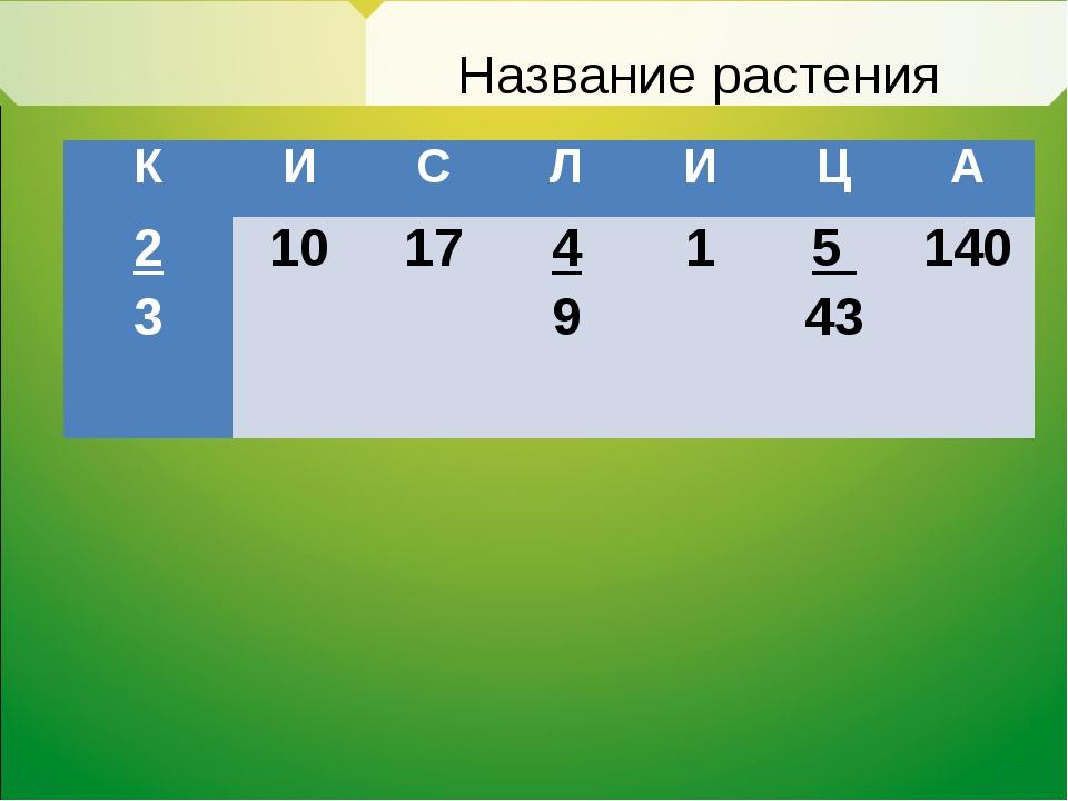 Название растения КИСЛИЦА 2 3 10  17  4 91 5 43140