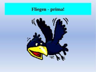 Fliegen - prima!